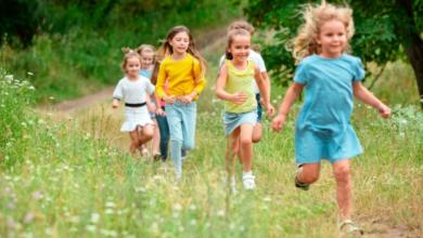 Photo of Леса и парки возле дома и школы хорошо влияют на психику и когнитивные способности детей